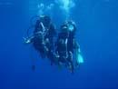 宮古島 ダイビング|OPENGATE